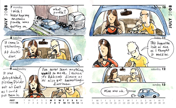 cartoon car conversation about a poodle with Addison's disease